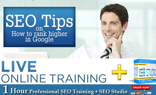 SEO Studio and SEO Advice Offer